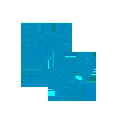 Transmisión de datos y posicionamiento